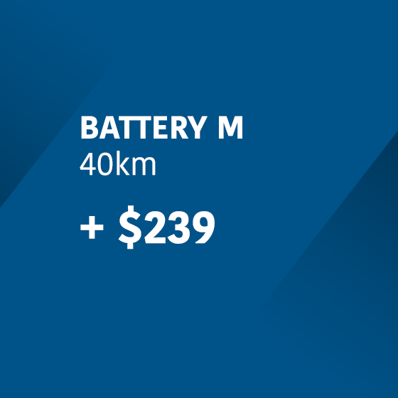 Extra Battery M